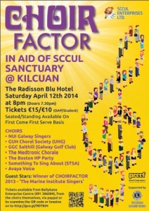 Choir Factor 2014 Galway